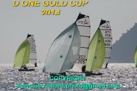 d one gold cup 2014  copyright francois richard  IMG_0055_redimensionner