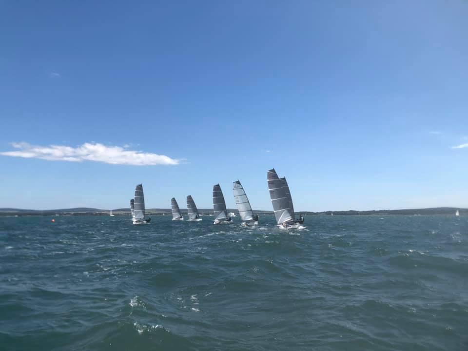 d1 regatta